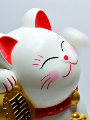 chat-porte-bonheur